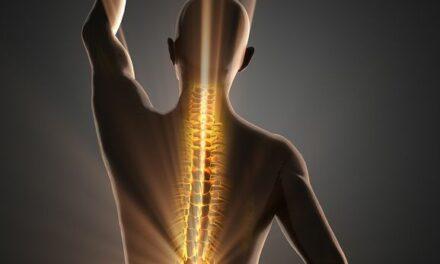 Hubtische: Gut für Rücken und Umsatz