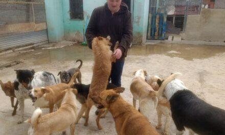 Harder Logistics engagiert sich im Tierschutz